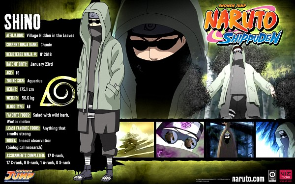 Tags: Anime, Studio Pierrot, NARUTO, Aburame Shino, Wallpaper, Official Art, HD Wallpaper, Character Sheet, Official Character Information