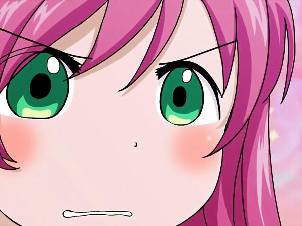 Tags: Anime, Rosario + Vampire, Akashiya Moka