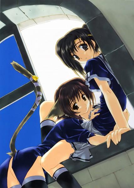 Tags: Anime, Amaduyu Tatsuki