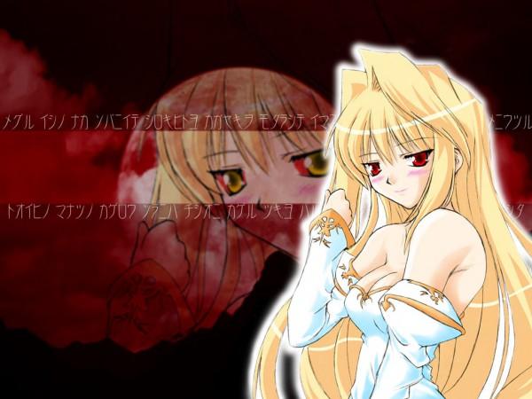Tags: Anime, TYPE-MOON, Tsukihime, Arcueid Brunestud, Archetype Earth, Wallpaper