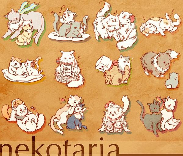 Tags: Anime, Pixiv Id 158423, Axis Powers: Hetalia, Austriacat, South Korea, Turkeycat, Finlandcat, Germancat, Spaincat, Japancat, Swedencat, Chinacat, Denmark Cat