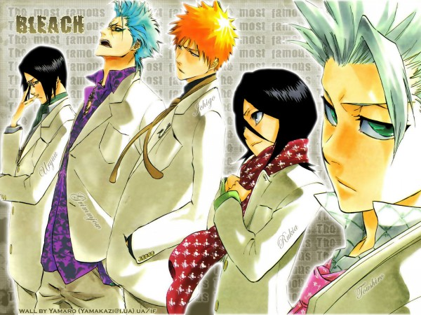 Tags: Anime, BLEACH, Hitsugaya Toushirou, Ishida Uryuu, Kuchiki Rukia, Grimmjow Jeagerjaques, Kurosaki Ichigo, Wallpaper, Gotei 13, Espada