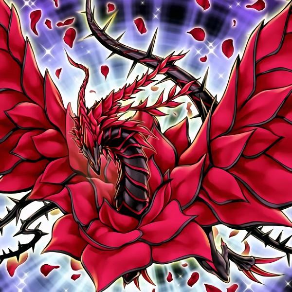 Black Rose Dragon - Yu-Gi-Oh! 5D's