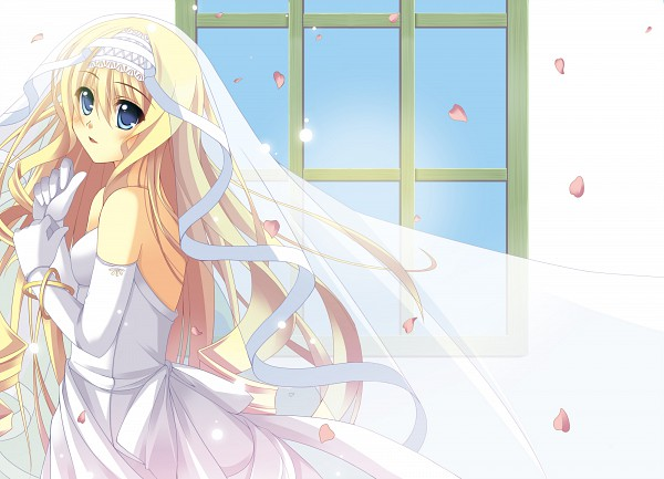 Bridal Veil - Veil