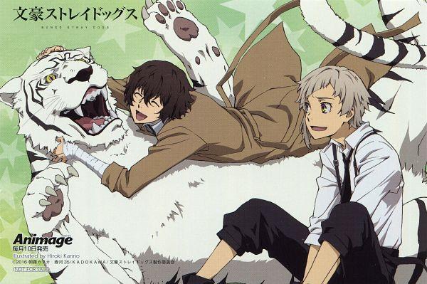 Tags: Anime, BONES (Studio), Bungou Stray Dogs, Dazai Osamu, Nakajima Atsushi (Bungou Stray Dogs), White Tiger, Magazine (Source), Scan, Official Art, Animage