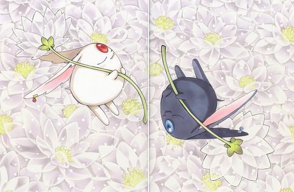 Tags: Anime, CLAMP, xxxHOLiC, Tsubasa: RESERVoir CHRoNiCLE, Tsubasa Album De Reproductions 2, Mokona Modoki (Black), Mokona Modoki, Opposites, Scan, Official Art
