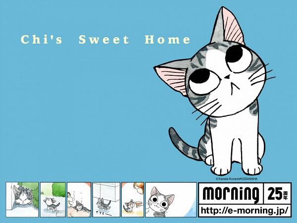 Tags: Anime, Konami Kanata, Chi's Sweet Home, Yamada chi, Official Wallpaper, Wallpaper, Official Art