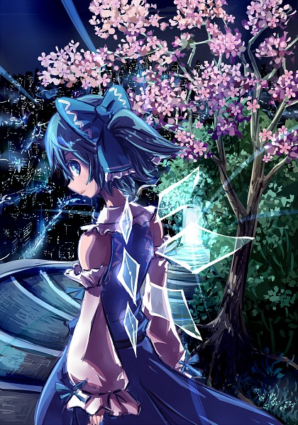 Tags: Anime, Same 2009, Touhou, Cirno, Touhou (Cosplay), Hakurei Reimu (Cosplay)