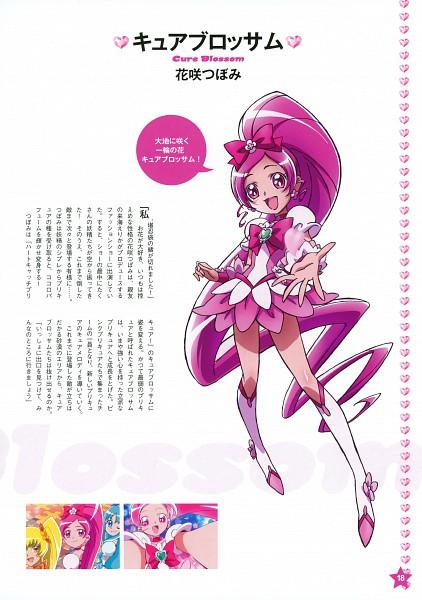 Tags: Anime, Kawamura Toshie, Heartcatch Precure!, Precure Pia, Hanasaki Tsubomi, Cure Blossom, Official Art, Mobile Wallpaper