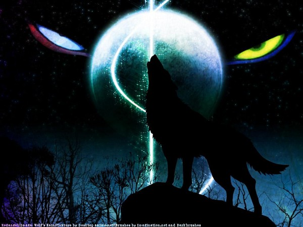 Tags: Anime, Wolf's Rain, Darcia, Wallpaper