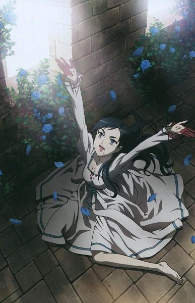 Tags: Anime, Ishii Akiharu, Production I.G., Blood+, Diva, Rose Bush, Official Art, Mobile Wallpaper