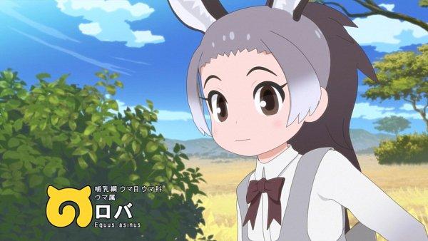 Donkey (Kemono Friends) - Kemono Friends