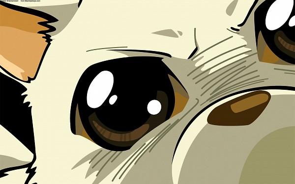 Tags: Anime, Excel♥Saga, Menchi, 2560x1600 Wallpaper, HD Wallpaper, Wallpaper