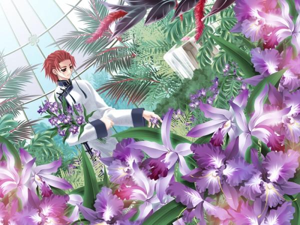 Tags: Anime, Mimizuku Auru, Fanatica, Gin no Eclipse, Souha