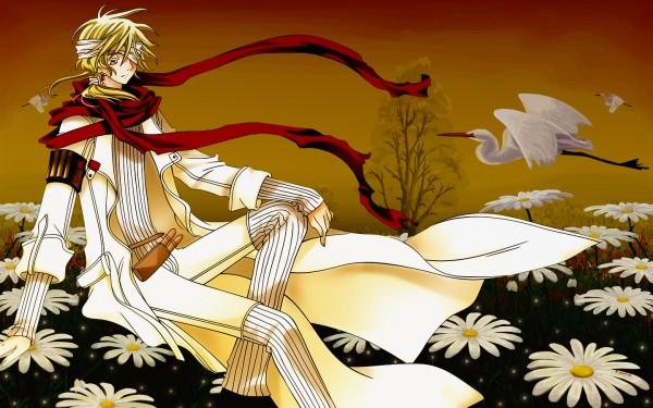 Tags: Anime, Tsubasa: TOKYO REVELATIONS, Tsubasa: RESERVoir CHRoNiCLE, Fay D. Flourite, Crane, 1440x900 Wallpaper, Vector, Wallpaper