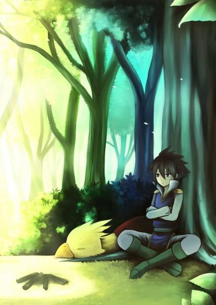 Tags: Anime, Pixiv Id 282469, Final Fantasy V, Chocobo, Butz Klauser, Boko, Campfire, Pixiv