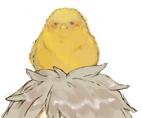 Gilbird - Axis Powers: Hetalia