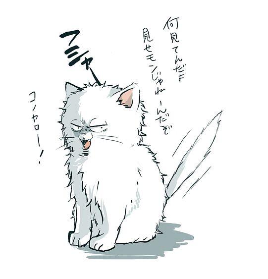 Gin (Gin Tama) - Sakata Gintoki