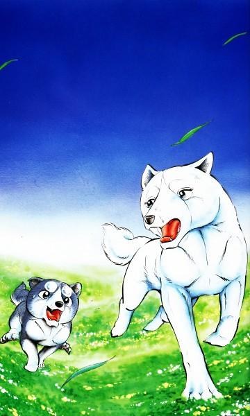 Tags: Anime, Ginga Densetsu Weed, Weed (Gdw), Sakura (Gdw), 1500x2500 Wallpaper, 3:5 Ratio, Wallpaper, Mobile Wallpaper