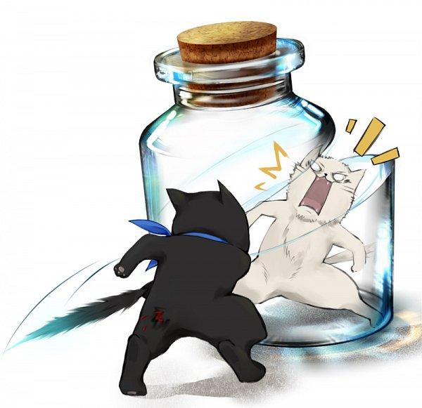 Tags: Anime, Pixiv Id 1824961, Gintama, Katsura Kotaro, Sakata Gintoki, Katsura Cat, Gin (Gin Tama), In a Bottle, Pixiv Bottle, White Cat, Fanart From Pixiv, Pixiv, Fanart
