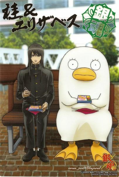 Tags: Anime, Gintama, Katsura Kotaro, Ko Elizabeth, Official Art, Scan, 3z