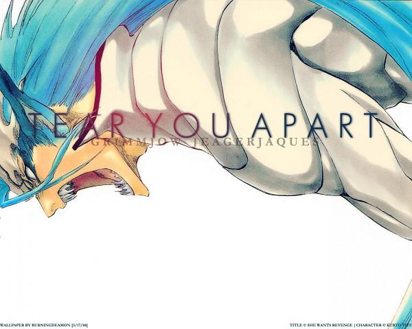 Tags: Anime, BLEACH, Grimmjow Jeagerjaques, Wallpaper, Espada