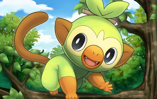 Tags: Anime, Pixiv Id 4916209, Pokémon Sword & Shield, Pokémon, Grookey, Monkey Tail, Sarumimi, Monkey, Fanart, Fanart From Pixiv, Pixiv