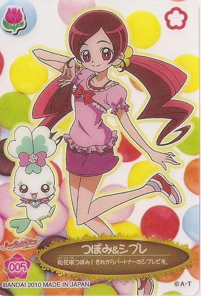 Tags: Anime, Heartcatch Precure!, Shypre, Hanasaki Tsubomi, Card (Source)
