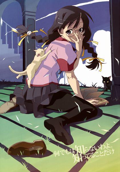 Tags: Anime, Shaft (Studio), Monogatari, Hanekawa Tsubasa, White Cat, Mobile Wallpaper, Scan, Official Art