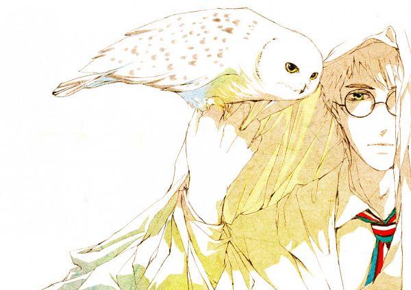 Tags: Anime, Pixiv Id 3619189, Harry Potter, Harry Potter (Character), Hedwig, Familiar (Mythology), Pixiv, PNG Conversion, Fanart