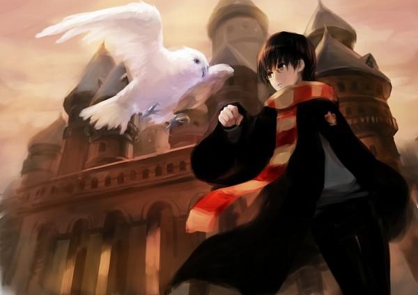 Tags: Anime, Asukaziye, Harry Potter, Hedwig, Harry Potter (Character), Familiar (Mythology), Pixiv, Fanart From Pixiv, Fanart, Gryffindor House