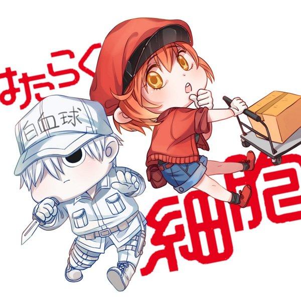 Tags: Anime, Pixiv Id 2456589, Hataraku Saibou, Erythrocite, U-1146, AE-3803, Neutrophil, Cells At Work!