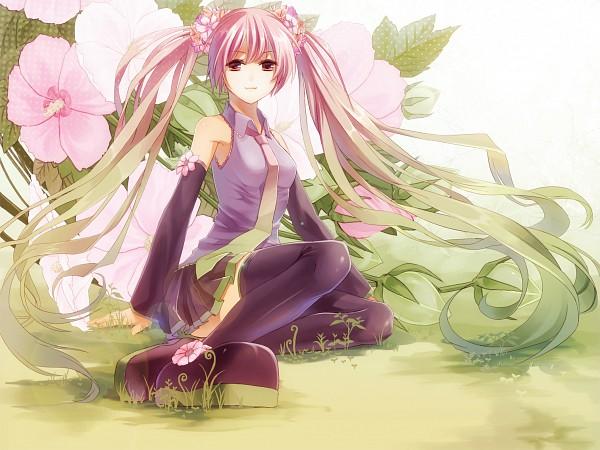 Tags: Anime, Shiramori Yuse, VOCALOID, Hatsune Miku, Sakura Design, Pixiv