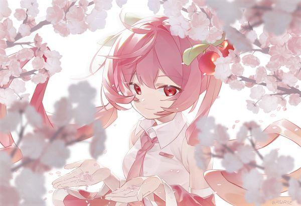 Tags: Anime, Pixiv Id 42625433, VOCALOID, Hatsune Miku, Sakura Design, Fanart, Fanart From Pixiv, Pixiv