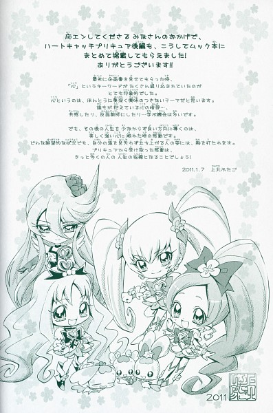 Tags: Anime, Kamikita Futago, Heartcatch Precure!, Cure Marine, Myoudouin Itsuki, Shypre, Cure Sunshine, Hanasaki Tsubomi, Kurumi Erika, Cure Moonlight, Cure Blossom, Tsukikage Yuri, Coffret