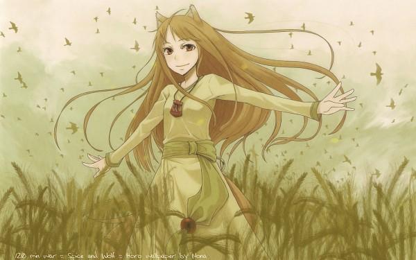 Tags: Anime, Ayakura Juu, Ookami to Koushinryou, Horo, Wallpaper