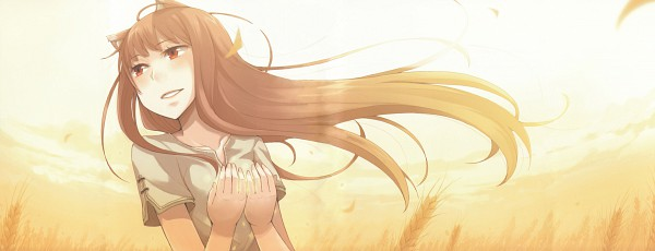Tags: Anime, Ayakura Juu, Ookami to Koushinryou, Horo, Wheat, Drift, HD Wallpaper, Facebook Cover, Wallpaper