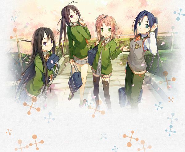 Tags: Anime, Akinashi Yuu, Fairys (Studio), Ima Sugu Oniichan ni Imouto da tte Iitai!, Haida Kimika, Nanase Matsuri, Shigemori Mao, Mitani Ayumu, Official Art