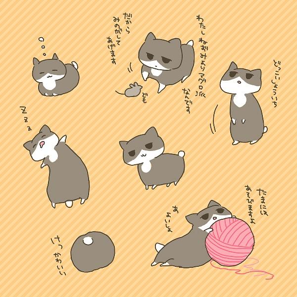 Japancat - Japan