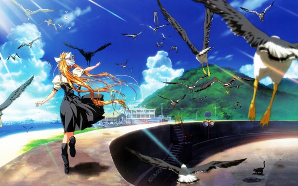 Tags: Anime, KEY (Studio), AIR, Kamio Misuzu, 1680x1050 Wallpaper, Seagull, Wallpaper