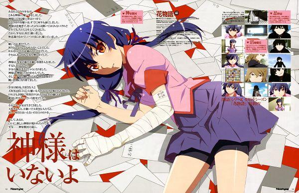 Tags: Anime, Shaft (Studio), Monogatari, Newtype 2014-06, Kanbaru Suruga, Scan, Official Art