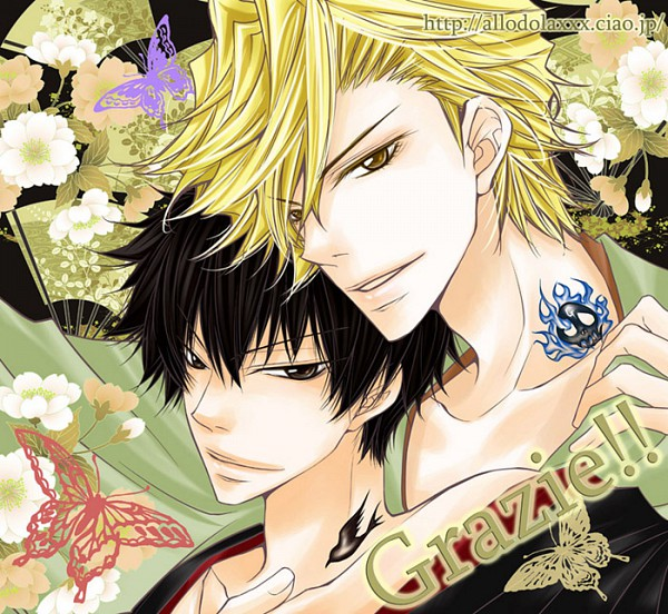 Tags: Anime, Lion Punch, Katekyo Hitman REBORN!, Hibari Kyoya, Dino Cavallone