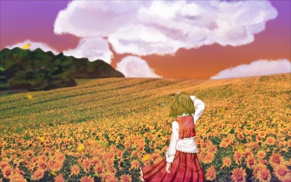 Tags: Anime, Black Bitou, Touhou, Kazami Yuuka, Fanart, Pixiv, Wallpaper, Yuuka Kazami