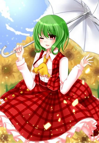 Tags: Anime, Yuzuki (Blossom), Touhou, Kazami Yuuka, Fanart, Pixiv, Mobile Wallpaper, Yuuka Kazami