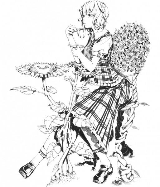 Tags: Anime, Sawasawa, Touhou, Kazami Yuuka, Frilled Socks, Yuuka Kazami