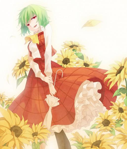 Tags: Anime, Shion (Mamuring), Touhou, Kazami Yuuka, Yuuka Kazami