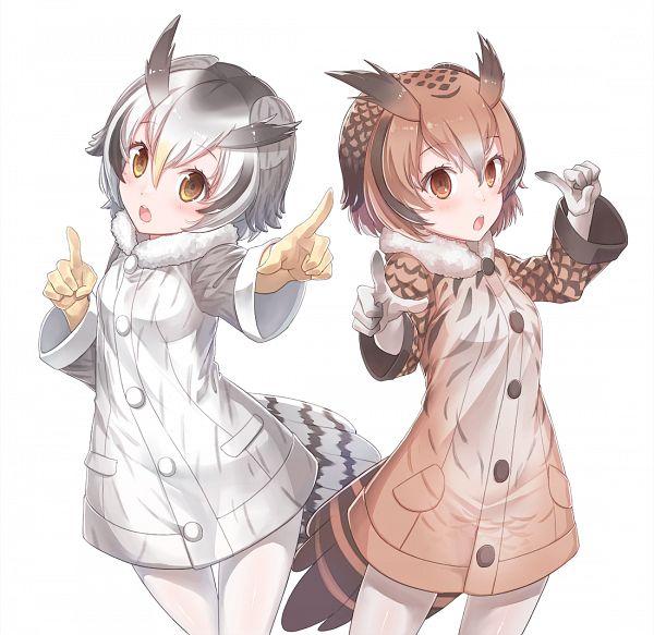 Tags: Anime, Konnyaku, Kemono Friends, Eurasian Eagle Owl (Kemono Friends), Northern White-faced Owl (Kemono Friends), Nigeru wa Haji da ga Yaku ni Tatsu (Parody), Koi Dance, PNG Conversion