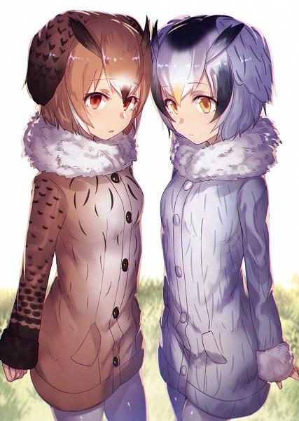 Tags: Anime, Notsugimi, Kemono Friends, Eurasian Eagle Owl (Kemono Friends), Northern White-faced Owl (Kemono Friends), Fanart, Mobile Wallpaper, Fanart From Pixiv, Pixiv