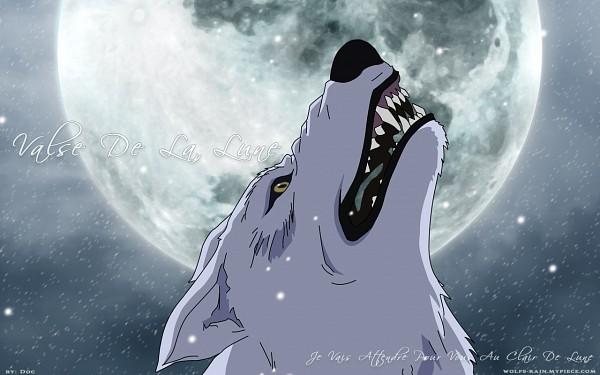 Tags: Anime, Wolf's Rain, Kiba (Wolf's Rain), Wallpaper