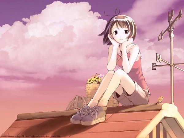 Tags: Anime, Yoshizuki Kumichi, Mahou Tsukai ni Taisetsu na Koto, Kikuchi Yume, Sitting On Roof, Roof, Weather Vane
